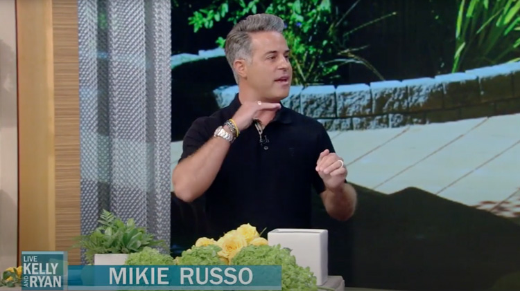 How to Create the Perfect Tablescape with Mikie Russo